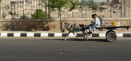 Out of Cairo - the traffic is much more sedate
