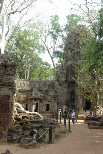 Still standing - just.  Ta Prohm Temple - Cambodia