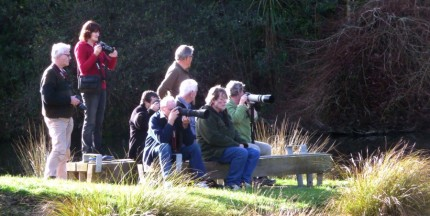 Get the long lens out - Rennie Photo